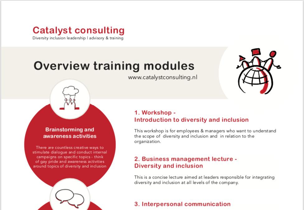 Catalyst Consulting - vormgeving workshop pdf met handgetekende iconen